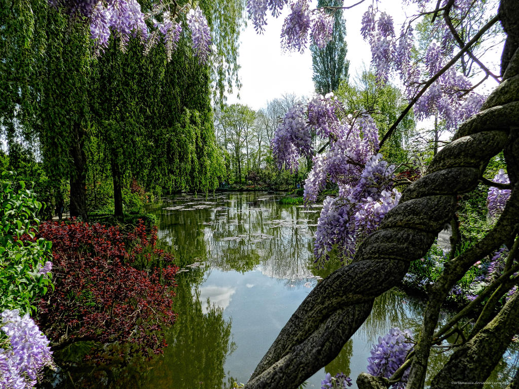 View from the Japanese Bridge in Monet's Garden by artamusica