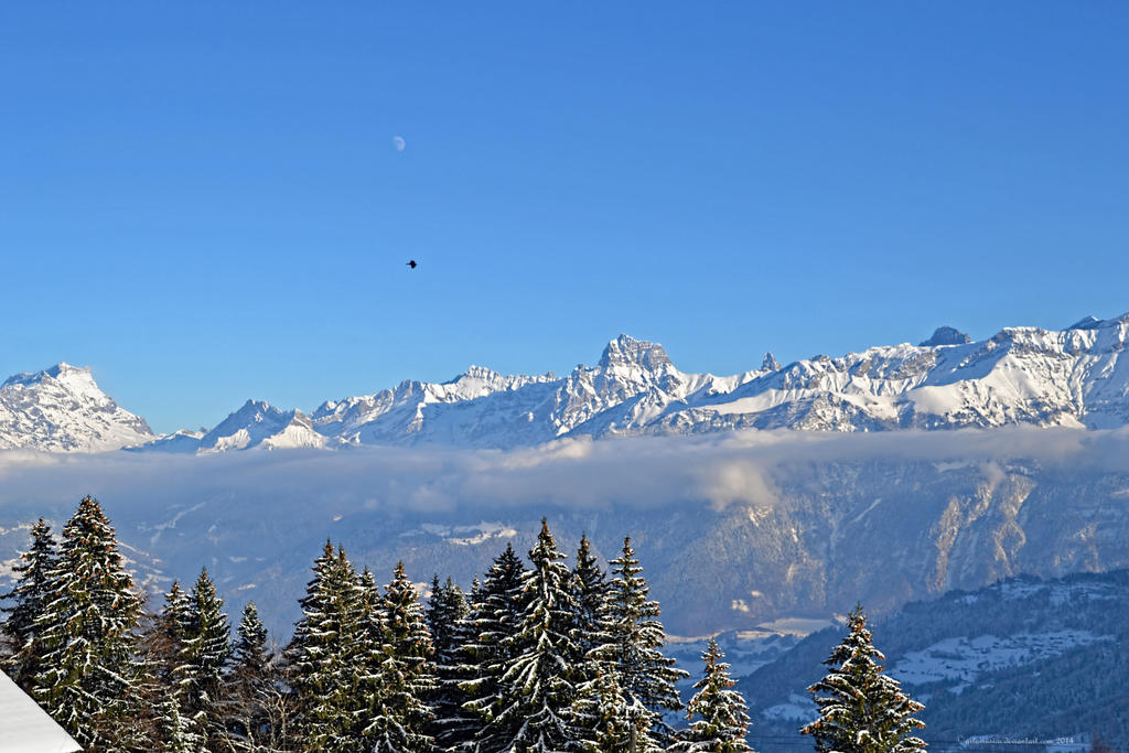 Alpenview, Morgins by artamusica