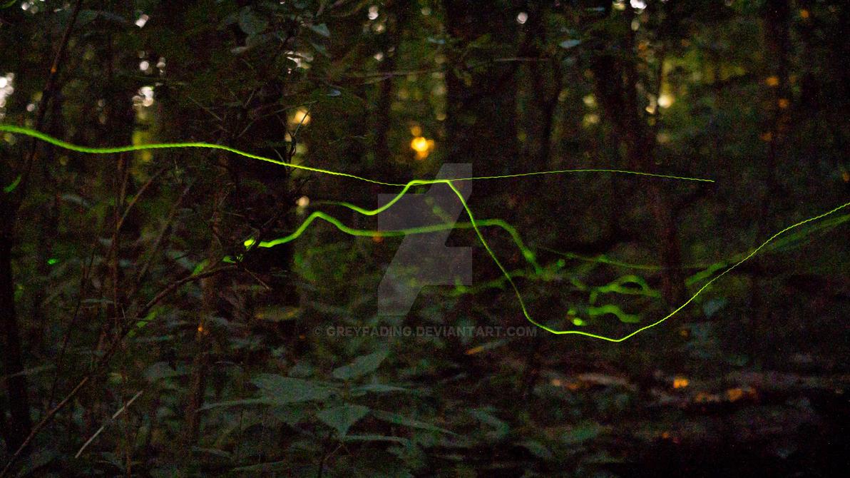 Night Ghosts by GREYFading