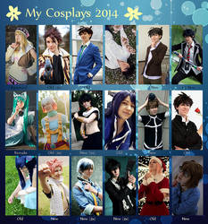 - Cosplay review 2014 - by Yamane