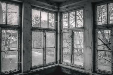 Ein Blick hinaus by C-Asepsis