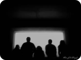 Aquarium Silhouette by kristi-leegibson