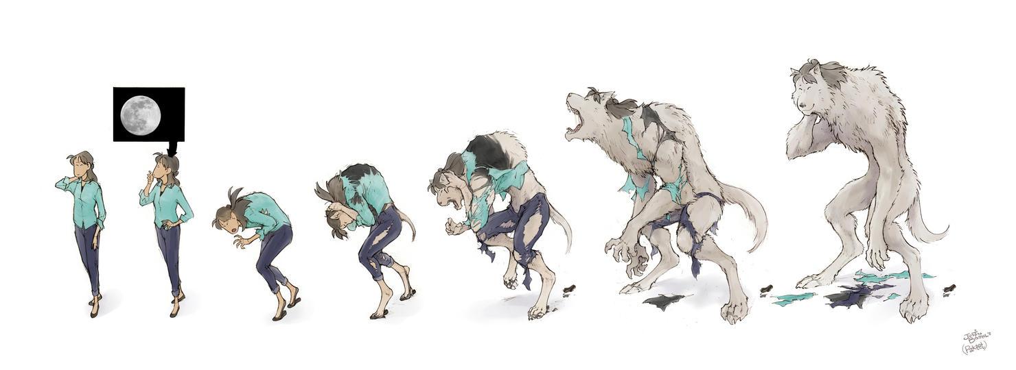 Wolf Transformation Sequence Megumi Werewolf...