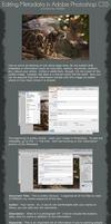 Basic Metadata Tutorial for Photoshop CS 5