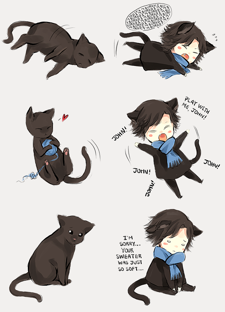 Sherlock and Cat by FrozenTimez