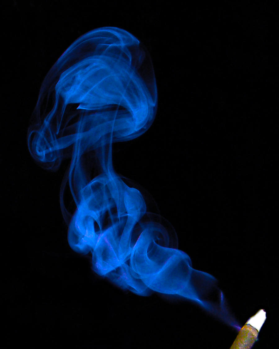 Smoke Blue Wall Decor : Blue smoke shroom by ibehoey on deviantart