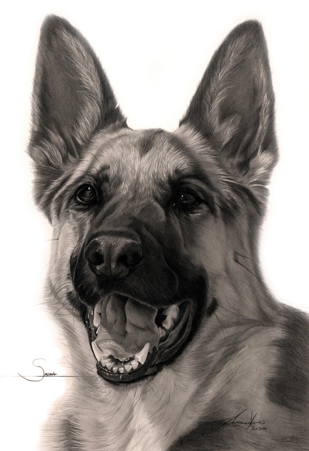 Commission - 'Sasha' the German Shepherd by Captured-In ...