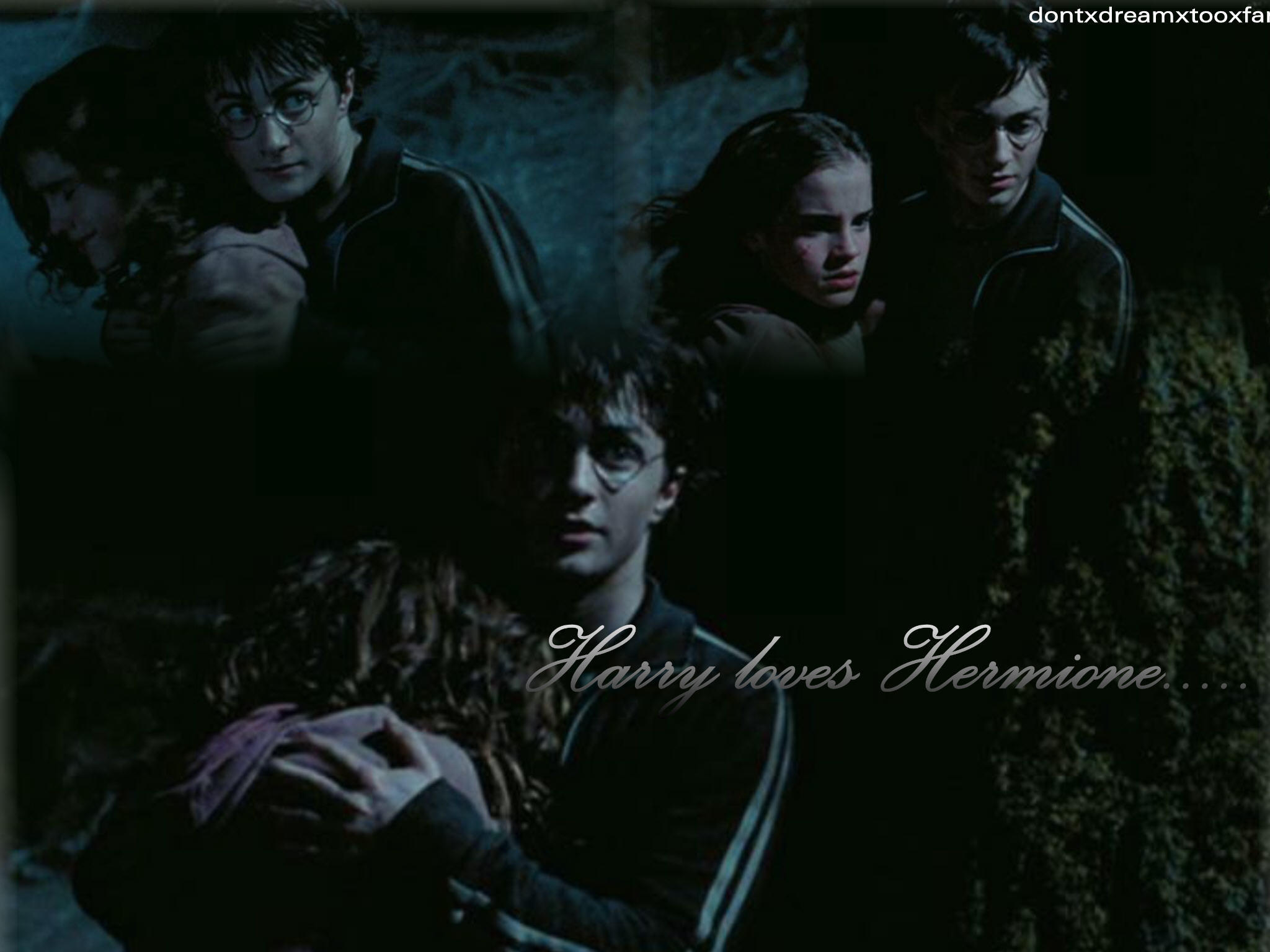 Download Wallpaper Harry Potter Love - harry_loves_hermione_wallpaper_by_dontxdreamxtooxfar  Snapshot_296735.jpg