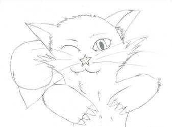 Stupid Cat Demon