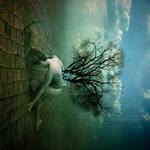Beautiful Mind by randomstarlight