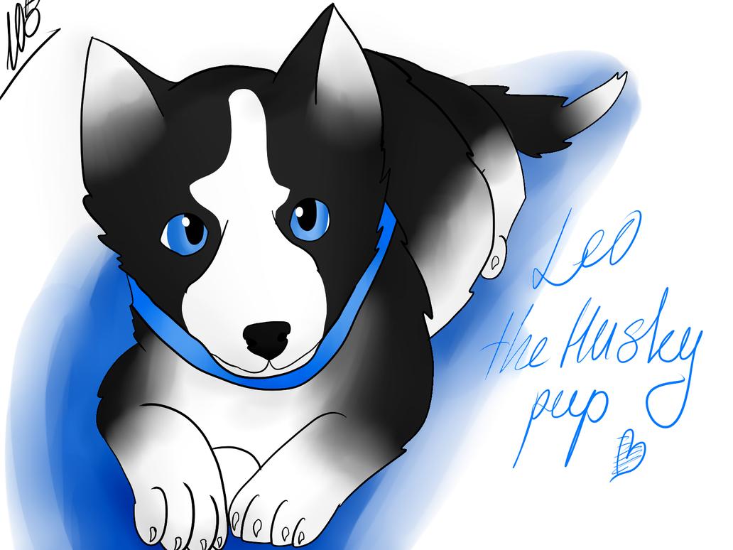 Leo as a Husky Pup by Foziz105