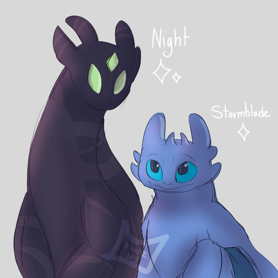Night and Stormblade [Gift] by Foziz105