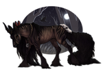 Giza-Kifo | Doe | Aspiring Revoker(Witch)