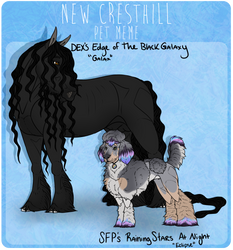 NCH || Galax and Eclipse - Xariyah's Pets
