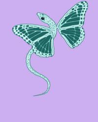 Butterflydragon by mothrakaiju