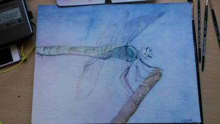 Dragonfly by Nairalin