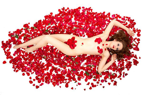 American Rose Beauty by MarilynFaye