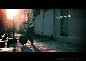 Feeling Tranquil by reubenteo