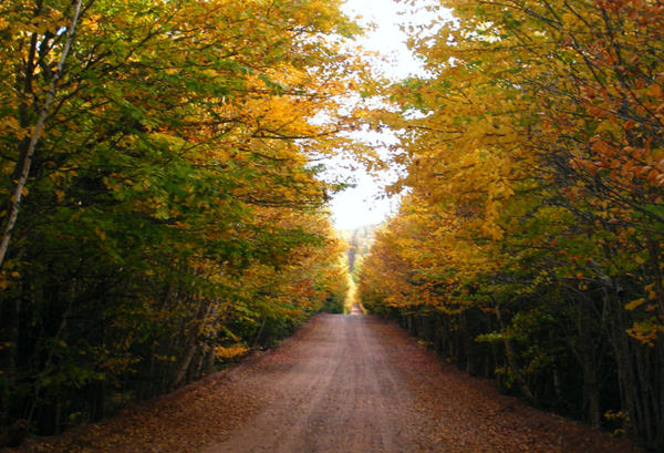 County Line Road by BitterSweetBarb