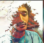Seany -  Bird Disintegration - Forest - VINCI