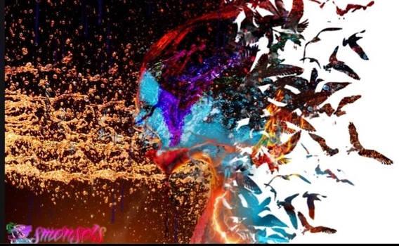 AffinityBySerif - Sample - Disintegration - Lady