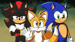 Shadow, Tails y Sonic 2