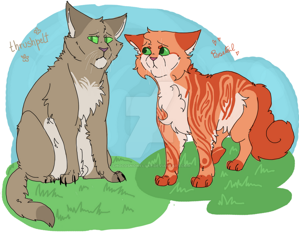 Warrior Cat Group