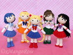Collection of Inner Sailor Scouts Group