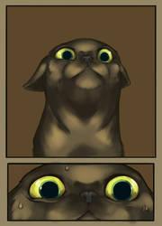 terror cat by Oolh