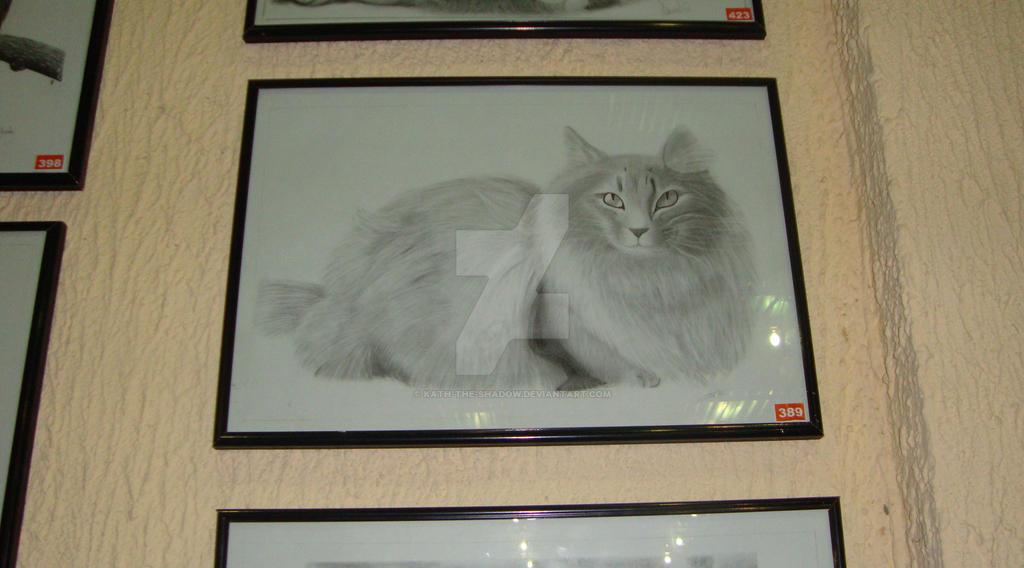 Gato dibujo analitico by Kath-the-shadow