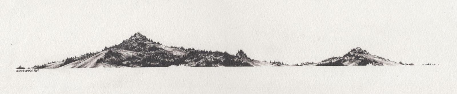 salinac grove