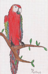 Parrot by Mystery-G