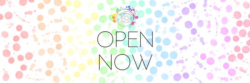 Website Store Open Now