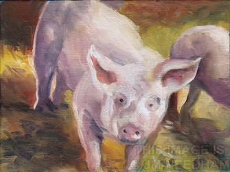 Curious Piglet by JMNeedhamArt
