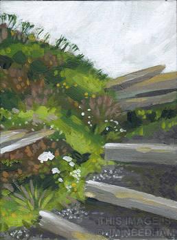 Tintagel Steps