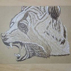 Ursus arctos by pcitr