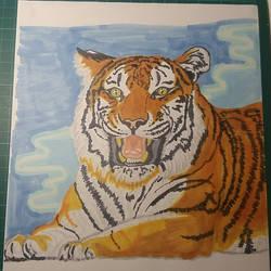 Panthera tigris by pcitr