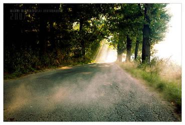foggy mistique by werol