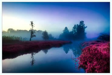 Morning Bell by werol