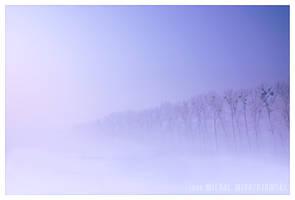 silent by werol