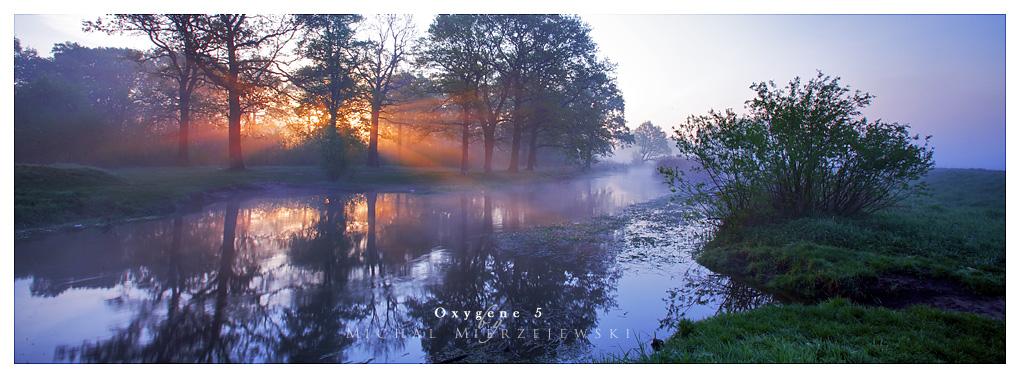 Oxygene 5 by werol