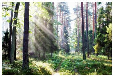 Spiritual Healing by werol