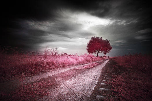 Roads 002