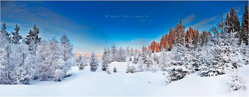 Winter Tales Part 4 by werol