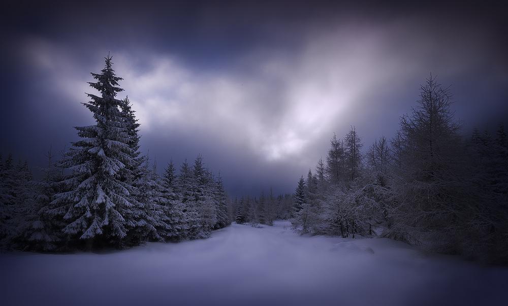 fairy tale by werol