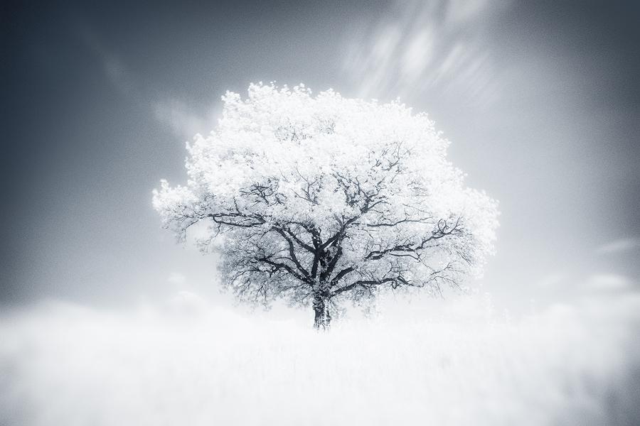breathe by werol