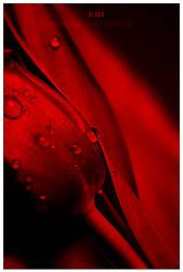 blood by werol