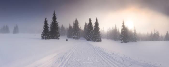 footsteps by werol