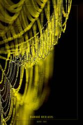 diamond necklaces by werol