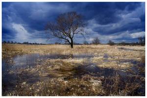 floods by werol
